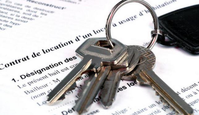 Contenu d'un contrat de location